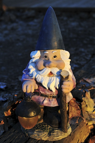 No Place Like Gnome