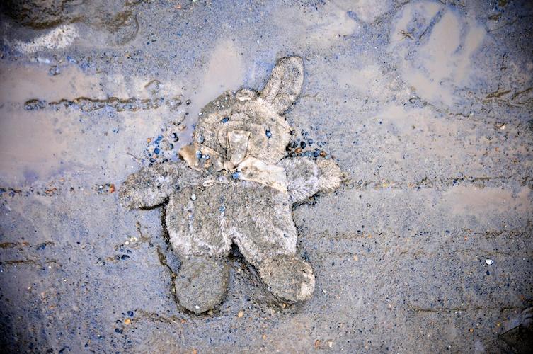 Discarded Bunny