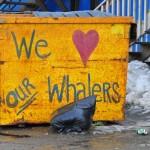 Whaler Love