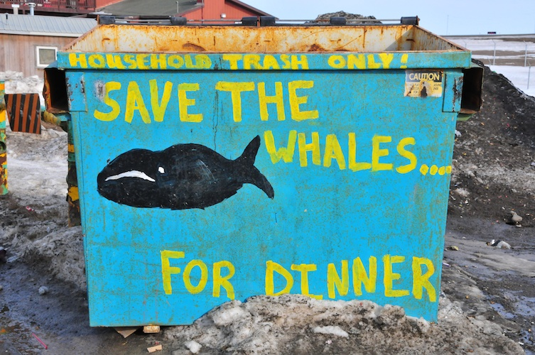Save the Whales... for Dinner