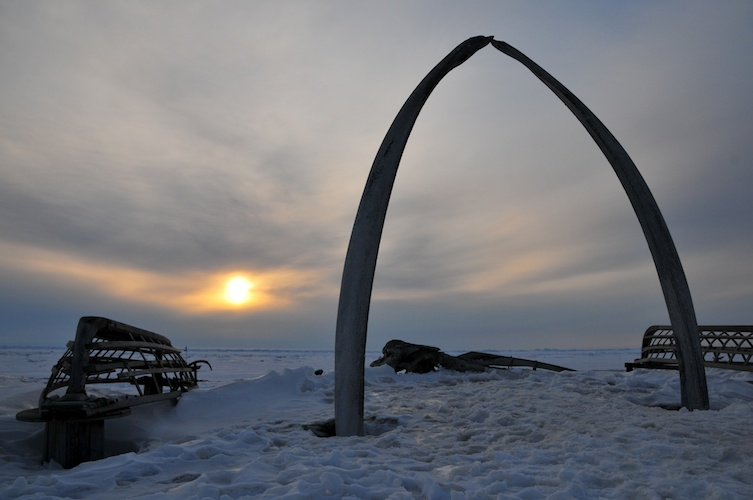 Bowhead Whale Jaw and Midnight Sunset