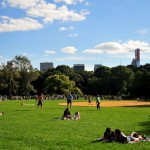 Beautiful Central Park Day.